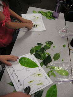 Chlorophyll rubbings:  Integrating art in a plant unit.