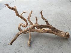 PW05 Manzanita branch wood -- driftwood plant shrimp moss discus Anubias Crypt #ManzanitaBranchWood