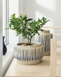 Inspired by Danish pottery and Japanese patterns, these Penrose ceramic planters are hand-thrown and glazed by the artisans at Red Wing Pottery.