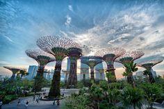 Футуристические сады Сингапура