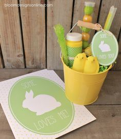 Some Bunny Loves You Buckets with FREE printables!