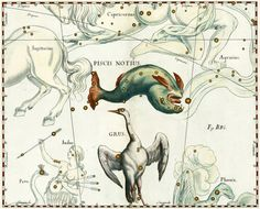 Piscis Notius and Grus Constellation, vintage celestial map printed on parchment paper, $8.90