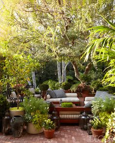 Terrace of Hollywood home designed by homeowners Max Mutchnick and Erik Hyman. Photo by William Abranowicz. Featured on www.elledecor.com.
