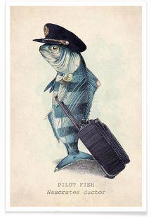 Top Kunstdrucke online kaufen | JUNIQE Kollektionen