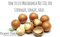 How to use Macadamia Nut Oil For Stronger, Longer, Hair.