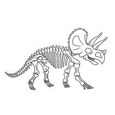 Dinosaur Projects, Dinosaur Activities, Dinosaur Crafts, Dinosaurs Preschool, Preschool Crafts, Dinosaur Skeleton, Dinosaur Bones, Dinosaur Fossils, Dino Museum