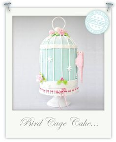 Decorating my bird cage cake