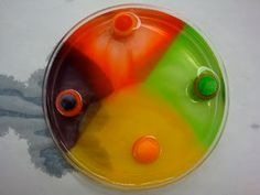 A Middle School Survival Guide: Gobstopper Science