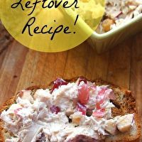 Skinny Turkey Salad Using Thanksgiving Leftovers by Ann Barajas