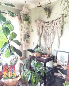 A true #tbt This green and macrame filled corner always made my heart sing! . Thankfully I still love the same corner in this room (it even has the same shell hanger still) but I do love looking back at special moments in our homes evolution. . Do you miss parts of your home that have changed over the last year or two? . I sure do . . . . . . . . . . . #sadieslovelylife #pin #dslooking #apartmenttherapy #myeclecticmix #eclecticdecor #jungalowstyle #urbanjunglebloggers #interiorrewilding…