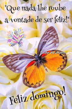Feliz domingo! Good Morning People, Beautiful Gif, Sweetest Day, Day For Night, Beauty Art, Spirituality, Pasta, Facebook, Sweet Dreams
