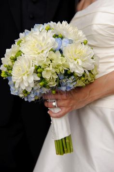 Dahlias and hydrangeas!!! beautifule blue & green hydrangea w/ white dahlia's
