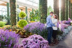 Engagement photos taken at Longwood Gardens during the fall Engagement Shoots, Wedding Engagement, Our Wedding, Picture Ideas, Photo Ideas, Sun Flare, Longwood Gardens, Lancaster, Wedding Pictures