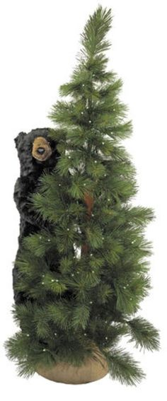 6' Pre-Lit Scotch Pine Artificial Christmas Tree with Black Bear - Clear LED Lights - 31071256