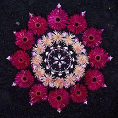 Mandala by Kathy Klein Rangoli Designs Flower, Flower Rangoli, Flower Garlands, Flower Petals, Mandala Art, Mandala Nature, Mandala Meditation, Land Art, Diwali Decorations
