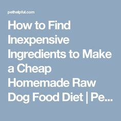How to Find Inexpensive Ingredients to Make a Cheap Homemade Raw Dog Food Diet | PetHelpful