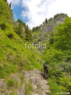 """Bergwandern im Tobel"""