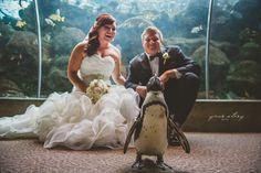 Carolyn & Jon's Florida Aquarium Wedding - Worldwide & Local ...