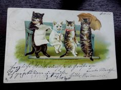H MAGUIRE ARTIST OLD POSTCARD ANTHROPOMORPHIC CATS SAT ON PARK BENCH BOEHME 1900