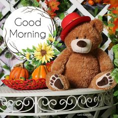 Pumpkin Images, Good Morning Cards, Happy Weekend, Teddy Bear, Toys, Nice, Pictures, Good Morning, Activity Toys