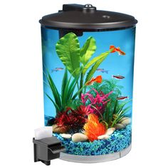 Hawkeye 360 View Aquarium Kit with LED Lighting and Filtration Latest Fish Tank - Fish Tank for sales Aquarium Set, Aquarium Lighting, Aquarium Fish Tank, Beautiful Tropical Fish, Beautiful Fish, Hawkeye, 3 Gallon Fish Tank, Betta Fish Tank, Fish Tanks