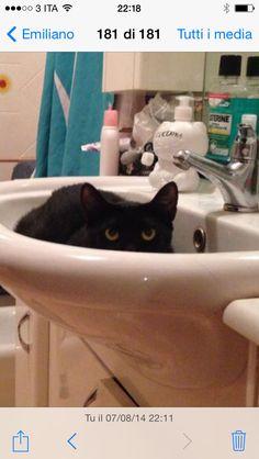 Zelda fa il bagno