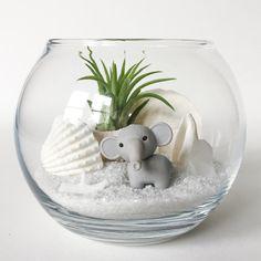 White Elephant Terrarium Kit by TerrariumKits on Etsy Air Plant Terrarium, Terrarium Diy, Sea Urchin Shell, Tulips In Vase, Glass Bottle Crafts, Grey Elephant, Elephant Figurines, Glass Vessel, Plantar