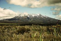 New Zealand <3 #iMissThisPlace