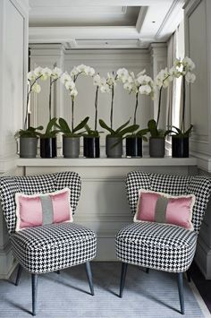 houndstooth--looks love it