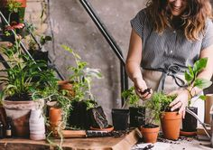 Like meditation or yoga, gardening is an age-old practice that engages the body, stimulates the mind, and uplifts the spirit.