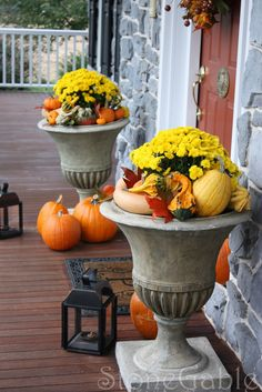 decorating ideas for 19′ urn fall | right yellow mums fill the urns that flank the front door. Pumpkin …