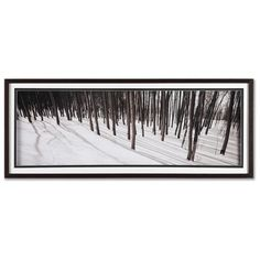 Graham & Brown Enchanted Forest Framed Print Art - 16 x 40