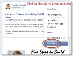 Three Reasons to Embed Content on Your Blog. You've been able to embed videos on your blog for years. Now, every social network is jumping on the bandwagon and giving you the option to embed your social posts. Simply find the dropdown button or arrow on a post and look for the option to get the embed code. Then paste that code on your site. denisewakeman.com