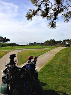 Sunshine, golf and ocean views. A very happy day indeed at Torrey Pines Golf Course!