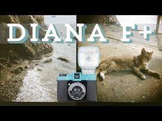 MY FIRST 120 CAMERA: DIANA F+ - YouTube