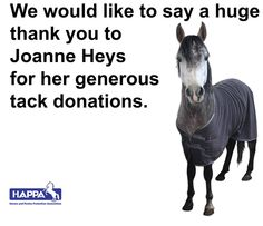 We would like to say a huge thank you to Joanne Heys for her generous tack donations.