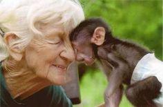 Rita Miljo, founder of South African baboon sanctuary, dies at 81 Primates, Amor Animal, Mundo Animal, When You Smile, Make Me Smile, Happy Smile, Baby Animals, Cute Animals, Animal Rescue Center