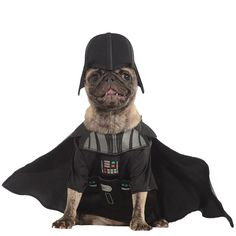 Turn your dog into the Dark Lord with this Star Wars Darth Vader Dog Costume! Darth Vader Dog Costume features a jumpsuit and headpiece. Star Wars Halloween, Darth Vader Halloween Costume, Costume Star Wars, Chien Halloween, Pet Halloween Costumes, Pet Costumes, Ewok Halloween, Halloween Ideas, Costume Ideas