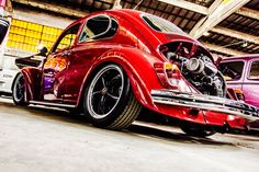 Fusca Red