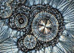 Витамин С под микроскопом
