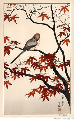 Autumn: Serenity of Red Maple by Toshi Yoshida - Japanese woodblock print. ukiyoe japan decoration antique fineart home decor collectible japanese woodblock print handmade home art beautiful decorative etching illustration traditional woodcut autumn fall Japanese Painting, Chinese Painting, Chinese Art, Japanese Bird, Japanese Prints, Japanese Maple, Vintage Japanese, Art Chinois, Art Asiatique