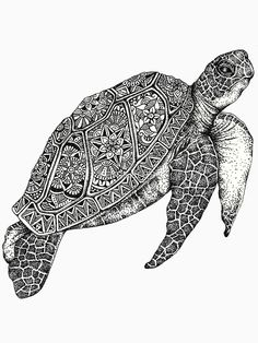 Surfboard Art, Zentangle Animals Art, Animal Drawings, Ink Art, Turtle Art, Mandala Design Art, Doodle Art Drawing, Turtle Tattoo, Sharpie Art