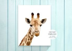 giraffe print nursery wall art baby animal printable Nursery Wall Murals, Nursery Paintings, Nursery Bedding, Giraffe Nursery, Giraffe Print, Baby Room Decor, Nursery Decor, Kids Bedroom, Bedroom Ideas