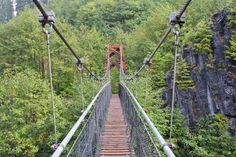 Swinging bridge in Lewis county