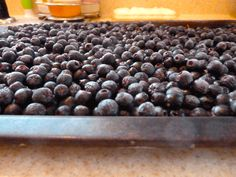 Aronia is chokeberry, whose berries are every bit as tart as the name implies. But they make good jam and wine. Harvesting aronia berries & tips on freezing berries (via HipChickDigs)