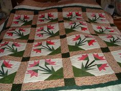 """Carolina Lily paper pieced  Quilt by """"dolores"""" from the quiltingboard.com"""