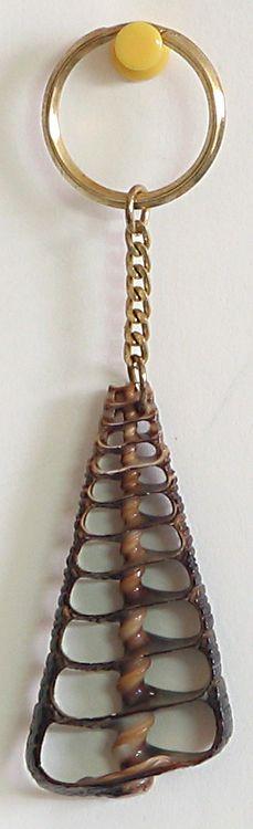 Designer Shell Key Chain (Shell)
