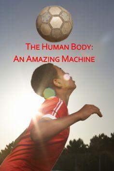 İnsan vücudu hakkında bilmediklerimiz / Teaching about the human body