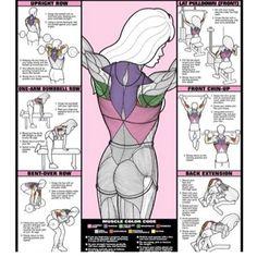 Back exercises #trainingroutines