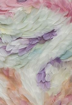 Feathers  #mindymaesmarket #dreamcloset
